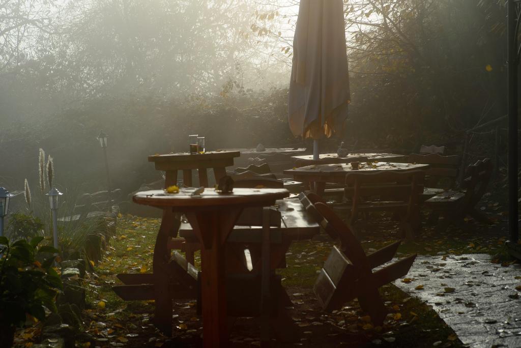 Pfälzerwaldhütte im Nebel