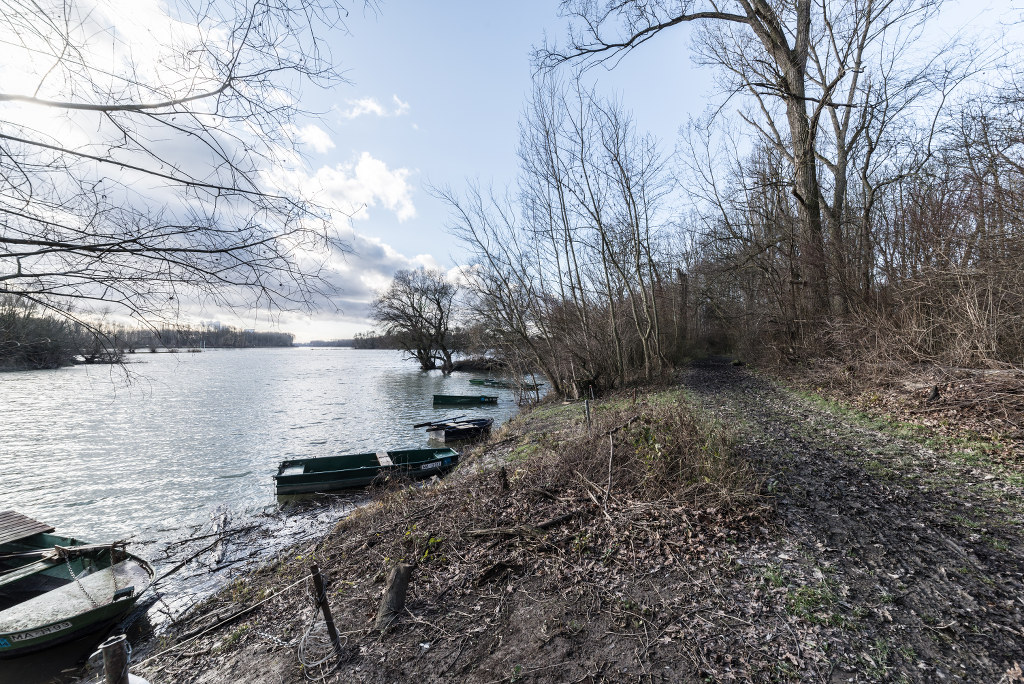 Rheinauen Januar 2015 Sigma 12mm wide-angle
